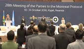 28th Meeting of Parties to the Montreal Protocol, Kigali-Rwanda